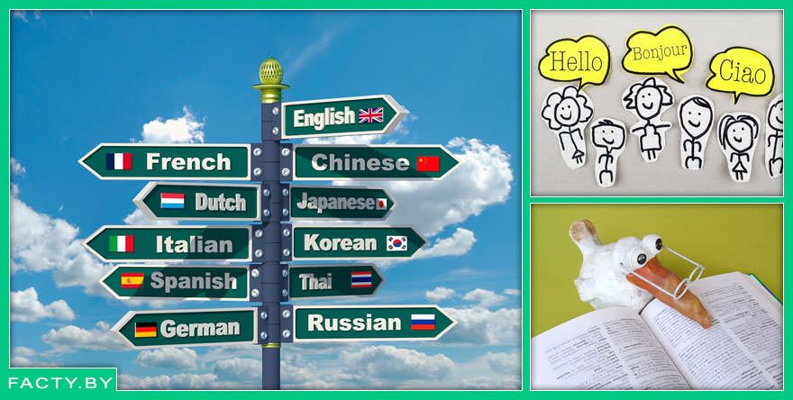 7 интересных фактов об изучении иностранных языков в 2019 году